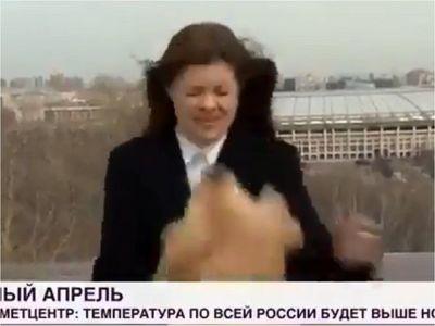 Perro roba el micrófono a periodista en plena transmisión en vivo