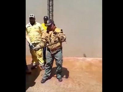 Bomberos voluntarios rescatan una yarará de un metro