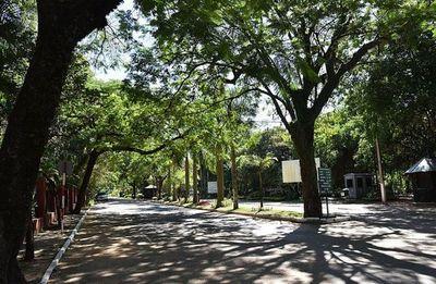 MOPC se habría comprometido a brindar mayor seguridad al Botánico y no cumplió, denuncia ciudadano