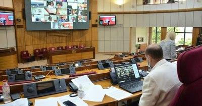 La Nación / Critican en redes sociales aumento recibido por la directora de la bancada del PDP en el Senado