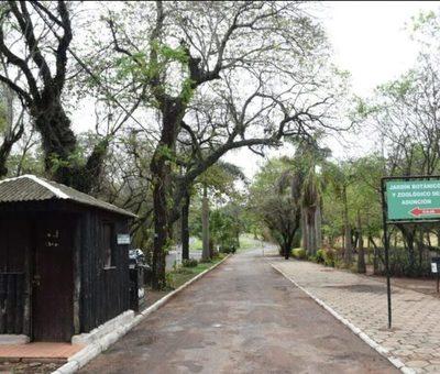 Caso Botánico: Hallan un colchón hecho de pasto en el takuaral