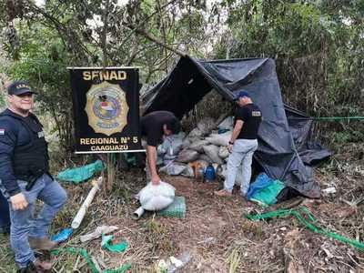 Destruyen panes y bolsas de marihuana en Colonia Bella Vista