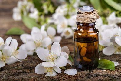 Conocé los beneficios del aceite esencial de jazmín