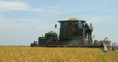 La Nación / FAO destaca acciones de Paraguay ante desastres agrícolas y evidencia falta de datos actuales