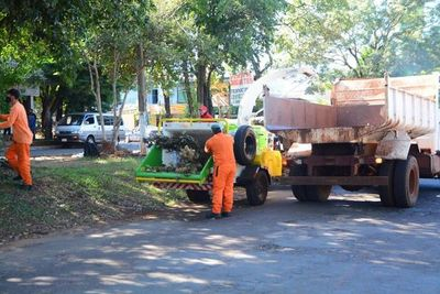 Emplean máquina trituradora para la temporada de poda de árboles