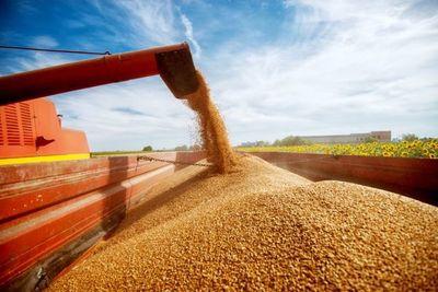 Productos agropecuarios llevan a las exportaciones a la primera suba en tiempos de pandemia