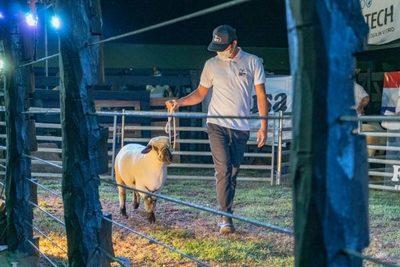 """Hampshire completó una """"exitosa"""" feria en la Expo Nacional con ventas de Ferusa"""
