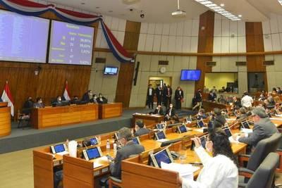Diputados rechazan utilización de fondos de las binacionales para la compra de insumos y medicamentos