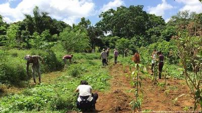 Proponen adaptar cultivos ante riesgos