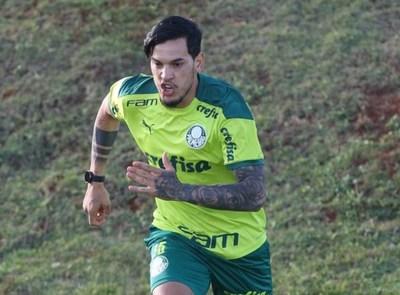 Gustavo Gómez busca otro título internacional con Palmeiras