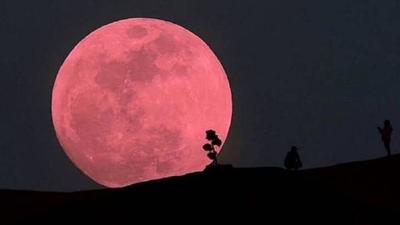 La superluna rosa iluminará los cielos el 26 de abril – Prensa 5