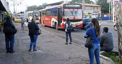 """Gobierno crea """"subsidio covid"""" para transportistas y les garantiza pagos"""