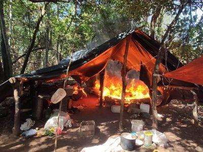 Antinarcóticos destruye cultivos de marihuana y campamentos