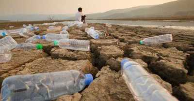 Menos del 3% de los ecosistemas terrestres del mundo permanecen sin intervención humana