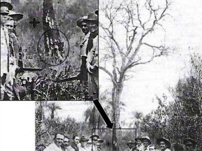 El árbol de kurupa'y y el fraude de la tumba del mariscal López