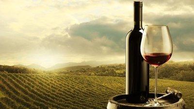 Día Mundial del Malbec: algunas cosas que no sabías sobre este vino