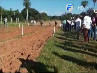 Concepción: Concurrida carrera de caballos en plena pandemia
