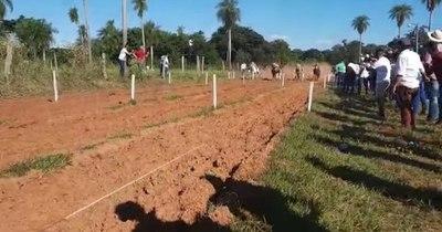 La Nación / Gran cantidad de personas en carrera clandestina de caballos realizada en Horqueta
