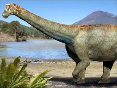 Chile descubre un dinosaurio del desierto de Atacama