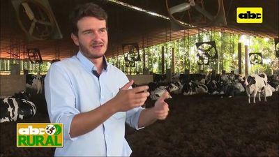 ABC Rural: Problemas en vacas lecheras por falta de confort