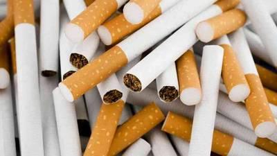 Industria tabacalera paraguaya: evasión de impuestos rondaría los US$ 400 millones anuales
