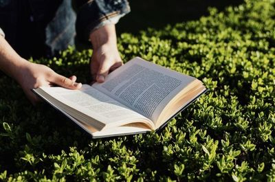 Cinco libros que Book Garden te recomienda por el Día del Libro
