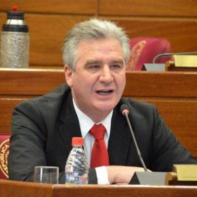 Bacchetta quiere ser Presidente del Senado