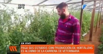 Joven paga sus estudios sembrando hortalizas en Misiones