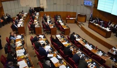 """Senadores aprueban en general proyecto """"Covid gasto cero"""""""