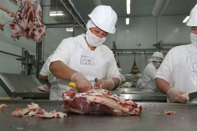 La carne paraguaya se alista para ingresar al mercado de Turquía