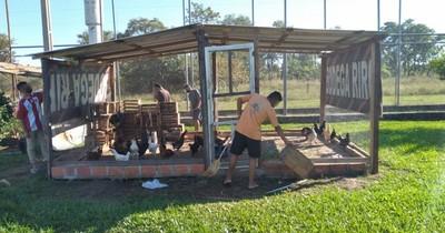 La Nación / Mediante cría de animales y huertas rehabilitan a jóvenes privados de libertad