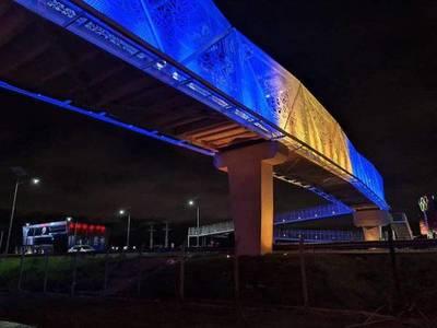 Iluminación de la pasarela de ñandutí es repudiada por luqueños – Prensa 5