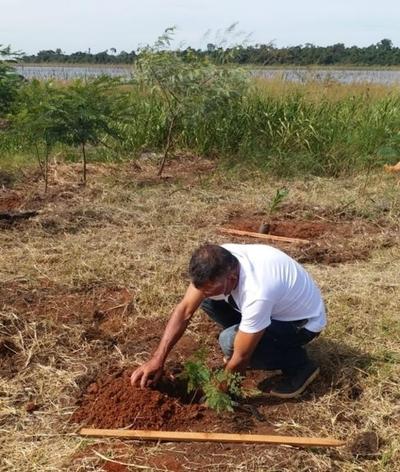 Inician restauración del bosque protector del Lago Yguazú