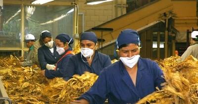 La Nación / La SET reitera imprecisiones del CADEP en su informe sobre sector tabacalero