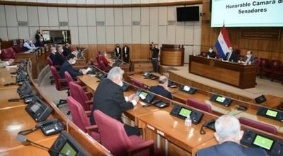 Senadores participarán de la revisión del Anexo C del Tratado de Itaipú