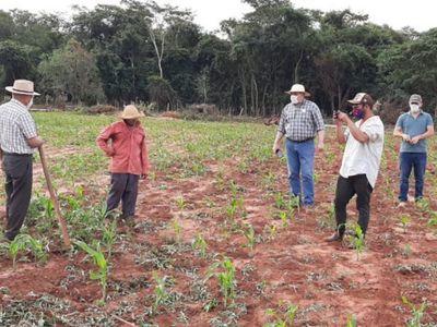 Agricultura familiar se queda sin financiamiento de Itaipú