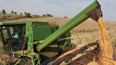 UGP estima cerrar año productivo con 10 millones de toneladas de granos producidos
