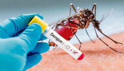 Salud reporta que el mayor porcentaje de casos por dengue proceden del norte del país