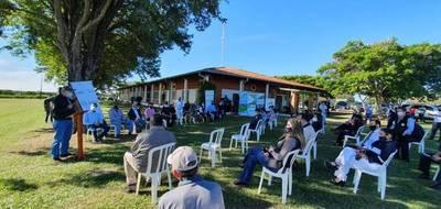 Inician cultivo experimental de cáñamo industrial en Guairá