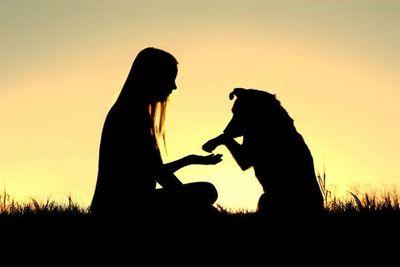 ¿Por qué las mascotas son tan buenas para la salud mental? La ciencia lo explica