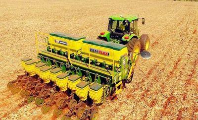 Trigo presenta buen volumen de exportación pese a baja producción