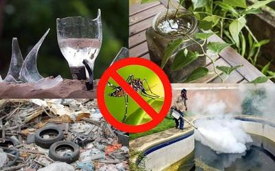 Eliminar e inactivar criaderos para frenar al Dengue – Prensa 5