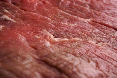 Nuevo récord histórico de exportación de carne (aunque industriales advierten que habrá retracción)