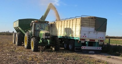 La Nación / Empiezan a transportar la soja vía terrestre debido a bajante del río