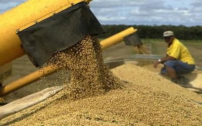 Tributación niega que el Gobierno analice imponer tributos a la soja