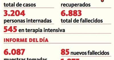 La Nación / Covid-19: 85 decesos y 3.204 hospitalizados