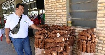 La Nación / Buscan fortalecer la producción de mandioca en Itapúa