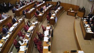"Ministros deberán explicar a senadores alcance del proyecto conocido como ""Ley Garrote"""