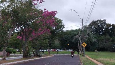 Jornada fría y lluviosa en Misiones