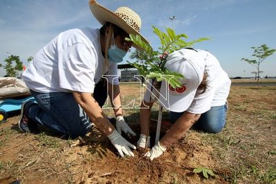 Con Plantatón 2021 buscarán sumar 5.000 árboles